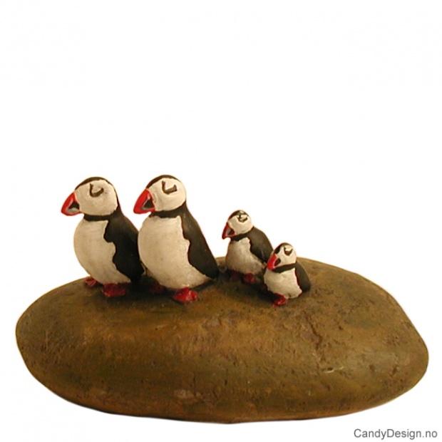 Lundefugl familie på stein
