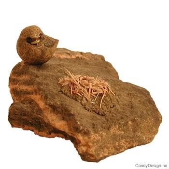 Liten fugl på stein med rede