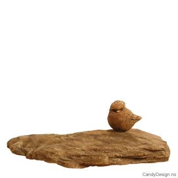 Fugl på stor stein