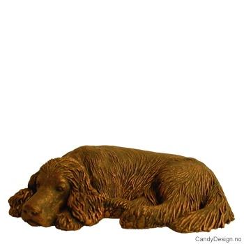 Hvilende hund