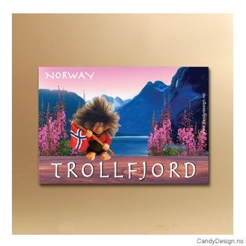 Trollfjord suvenir metallmagnet