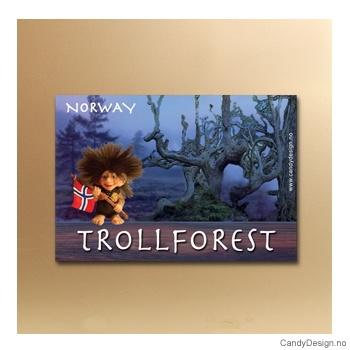 Trollforest suvenir metallmagnet