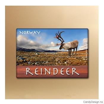 Reindeer suvenir metallmagnet