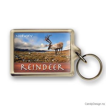 Reindeer suvenir nøkkelring