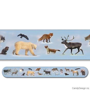 Wildlife suvenir neglefil