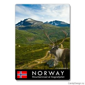 Metallmagneter med Norske naturbilder - Reinsdyr