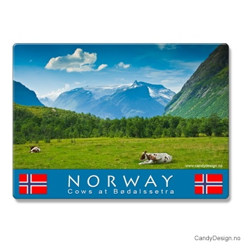 Metallmagneter med Norske naturbilder  Kuer på fjellet